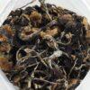 Buy Cambodian Mushroom